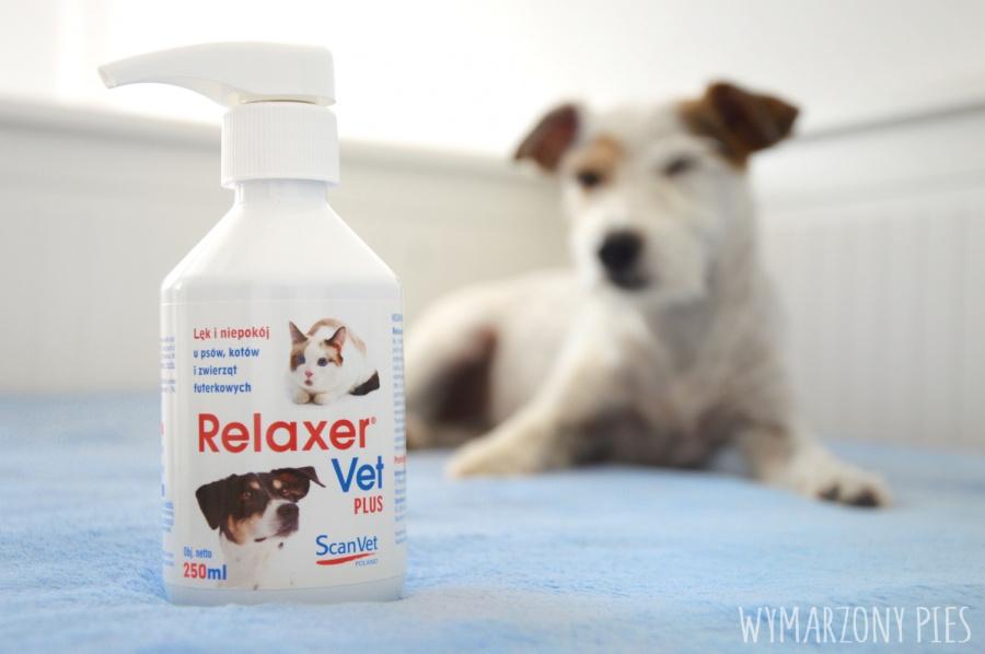 Zanim zdecydujemy się zastosować Relaxer VetPlus u naszego psa, warto skonsultować się z trenerem, behawiorystą lub weterynarzem.