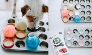 Jako zabawka węchowa dobrze sprawdzi się foremka na muffinki - w środku ukrywamy smakołyki, a na to nakładamy piłki czy nakrętki od słoików.