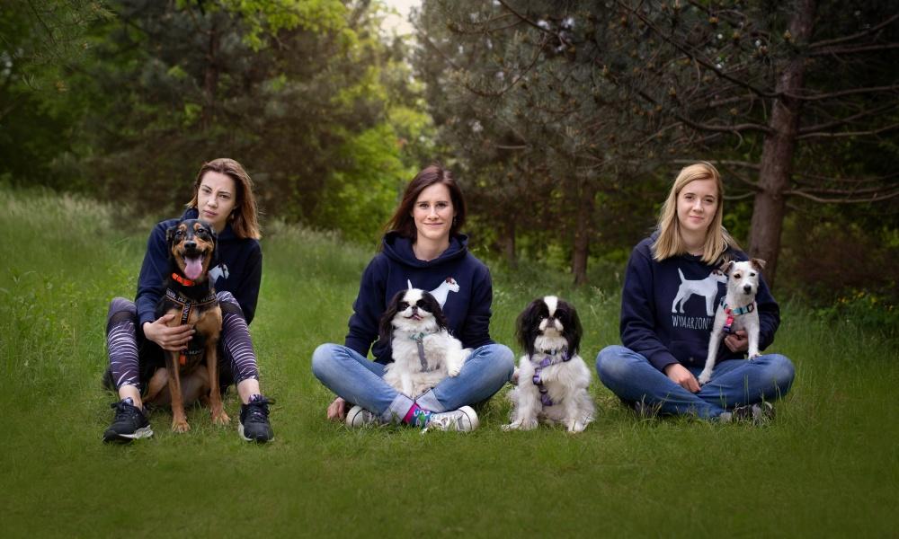 Wymarzony pies to szkoła dla psów stworzona z myślą psich opiekunach, którzy chcą zyskać nowe umiejętności przydatne w codziennym życiu z psem, budować wzajemną relację opartą na zaufaniu i komunikacji oraz aktywnie spędzić czas ze swoim pupilem.