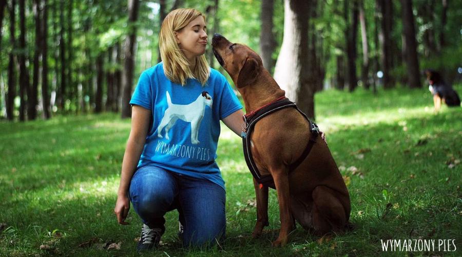 Petsitter, to hasło z którym coraz częściej można spotkać się na grupach i forach internetowych. Coraz więcej właścicieli psów korzysta z pomocy petsittera w codziennych spacerach oraz w czasie dłuższych wyjazdów.