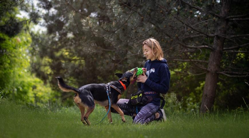 Podstawowa zasada udanego spaceru z psem jest taka, że spacer powinien być odpowiednio długi oraz dopasowany do potrzeb i możliwości naszego psiaka. | Spacer z psem