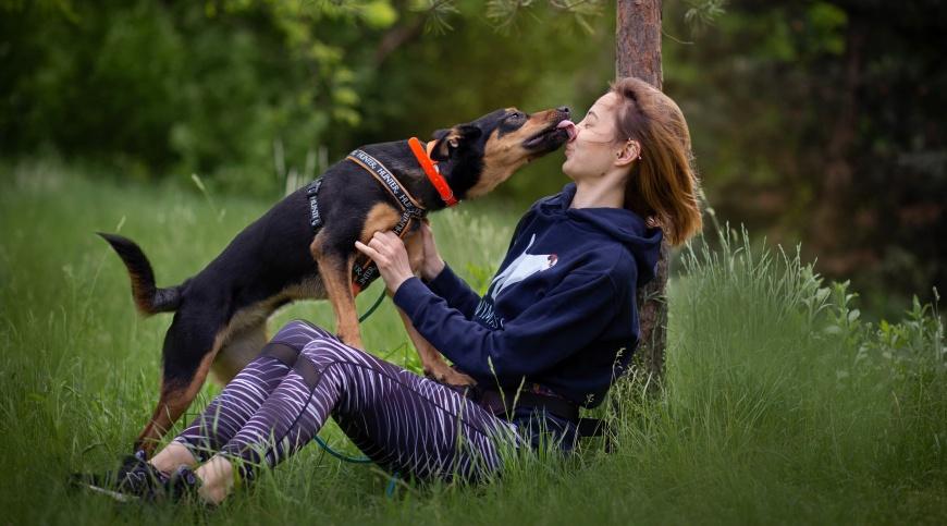 Oczywiście powinnyśmy zapewnić naszemu psu maksimum swobody w trakcie spacerów, jednak musimy także pamiętać o jego bezpieczeństwie orazo tym, aby nie zakłócać przestrzeni innych osób i zwierząt w okolicy.