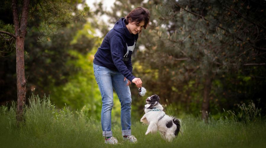 Wplatając treningi w codzienne spacery i poświęcając na nie nawet kilka minut dziennie, jesteśmy już w stanie osiągnąć świetne efekty!