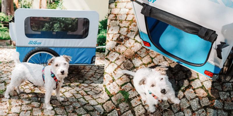 W czasie jazdy przyczepka sprawdza się znakomicie. Jest niezwykle komfortowa dla psa, ale także dla rowerzysty. Elastyczne mocowania i skrętne koła zapewniają dużą swobodę podczas jazdy.
